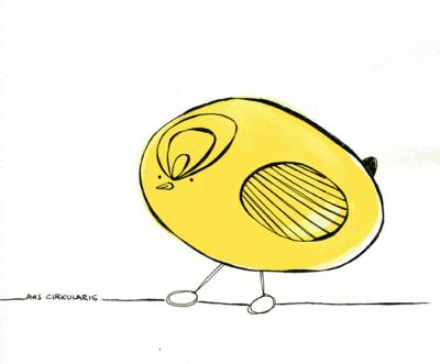 A little yellow bird - Avis Circularis